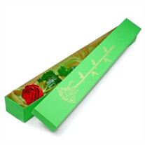 Elegant rose in a box